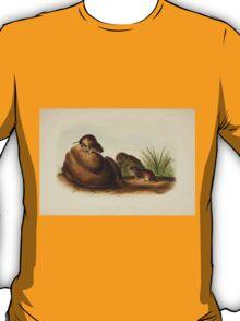 James Audubon - Quadrupeds of North America V2 1851-1854  Liconte's Pine Mouse T-Shirt