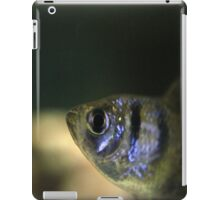 Black Widow Tetra iPad Case/Skin