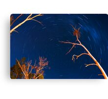 into the vortex Canvas Print