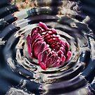 Liquid Flower XIV by EbelArt