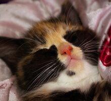 Sweet Dreams by MarianaEwa