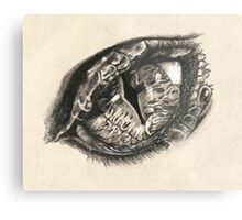 The Eye of Smaug Metal Print