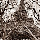 Eifel Tower by GalbaSandras
