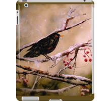 It Was Evening All Afternoon... iPad Case/Skin