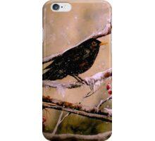 It Was Evening All Afternoon... iPhone Case/Skin
