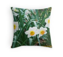 Minnesota's Daffodils Throw Pillow