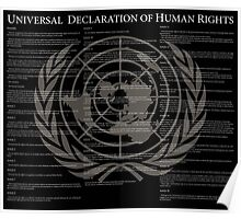 Universal Declaration of Human Rights Poster
