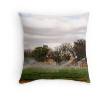 water cottage Throw Pillow