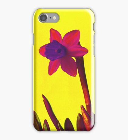 Daffodil Pink with Orange iPhone Case/Skin