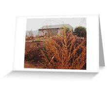 hidden shed Greeting Card