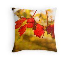 Autumn in the Vineyard Throw Pillow