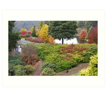 autumn beauty at Burnie (Tasmania) Art Print