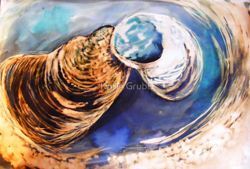 Shells I by kate conway