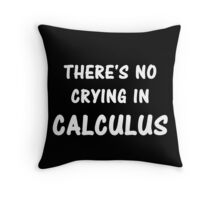 There's No Crying In Calculus Throw Pillow