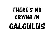 There's No Crying In Calculus Photographic Print