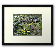 On the demolition site Framed Print