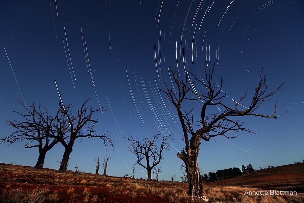 Star Trails Old Adaminaby by Annette Blattman