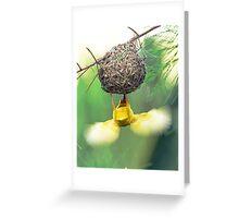 Fluttering Weaver Greeting Card