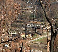 Marysville Bushfire Aftermath May 2009 by Tom Newman