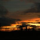 evening setting no.2 by Finbarr Reilly