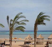 Sharm Beach by Sarah Howlett