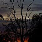 Finger-tips of Dawn by GerryMac