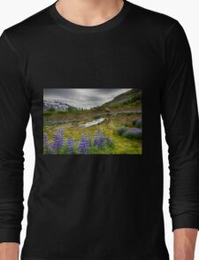 Beautiful Valley Long Sleeve T-Shirt