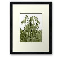Aged And Neglected Framed Print