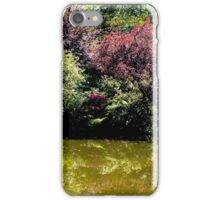 Tree Reflections iPhone Case/Skin