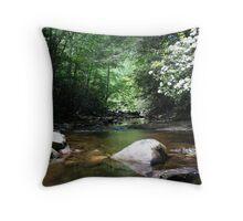 Shinny Creek Throw Pillow