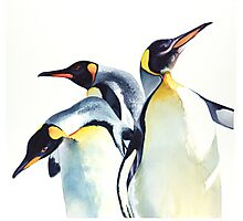 """Penguin Trio"" Wildlife Watercolor Photographic Print"