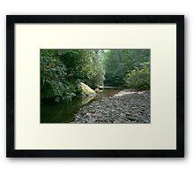 Cool glade Framed Print