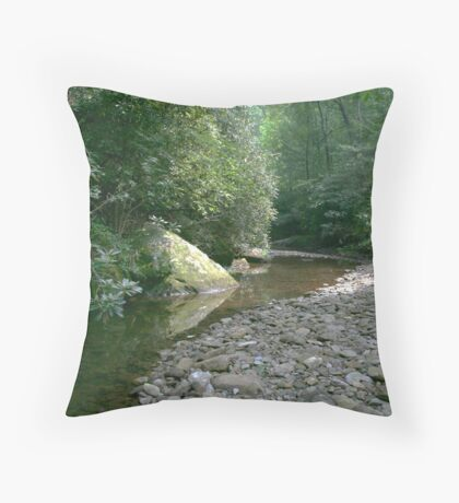 Cool glade Throw Pillow