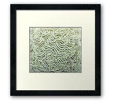 Pic Your Brain Coral (Natural) Framed Print