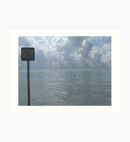 No Diving! Art Print