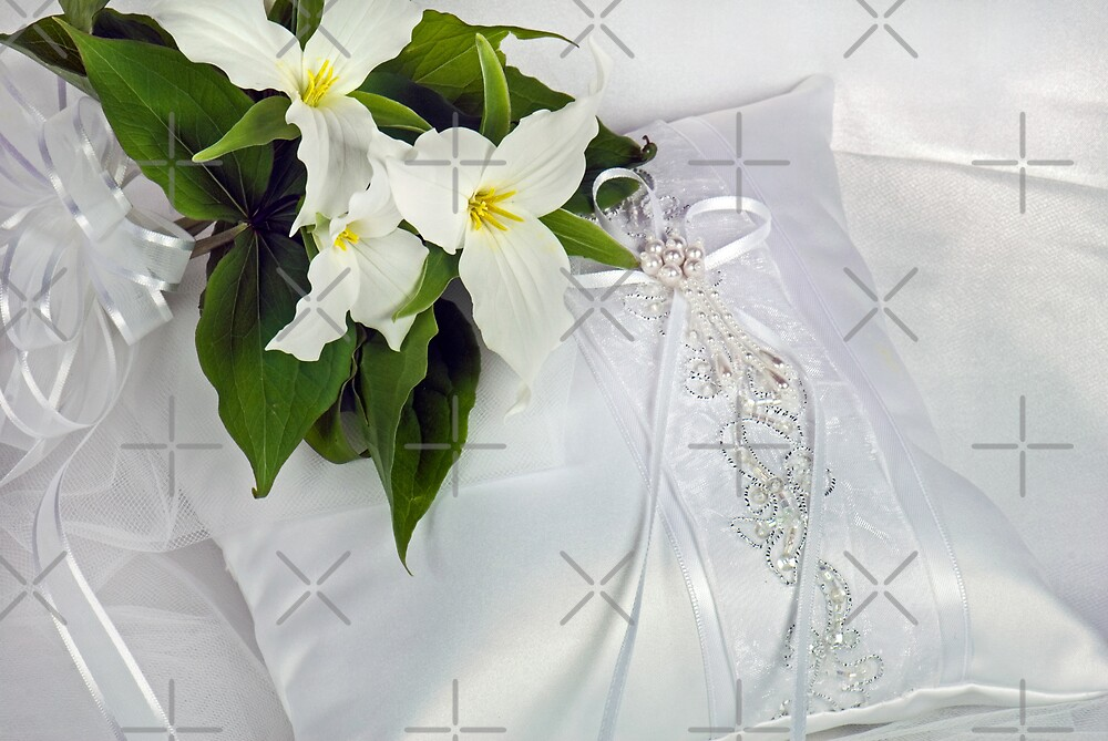 Pure Bridal by Maria Dryfhout