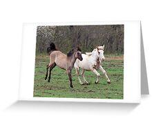 Fillies playing 5 Greeting Card