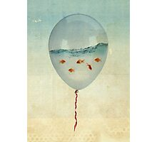 balloon fish Photographic Print