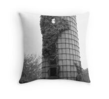 Rural Missouri Silo Throw Pillow
