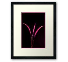 Red Blades Framed Print