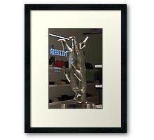 Silver Bear Framed Print