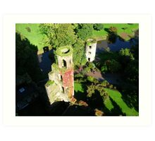 VIEW FROM BLARNEY Art Print