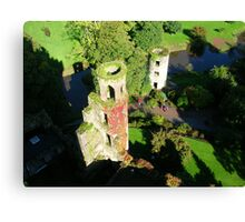 VIEW FROM BLARNEY Canvas Print