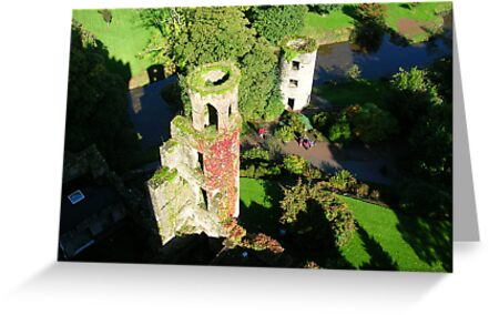 VIEW FROM BLARNEY by daisychain