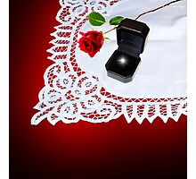 Rose and the Ring Photographic Print