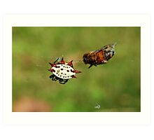 Jewelled Spider and dinner guest Art Print