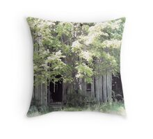 Rural Missouri Barn Throw Pillow