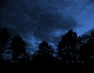 When the Blue Hour Comes© by walela