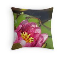 Waterlilly+Damselflies Throw Pillow