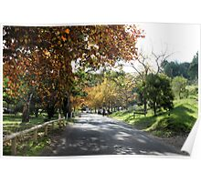 Brownhill Creek Recreation Park,Adelaide Hills, S.A. Poster